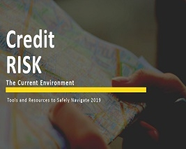Credit Risk: The Current Environment